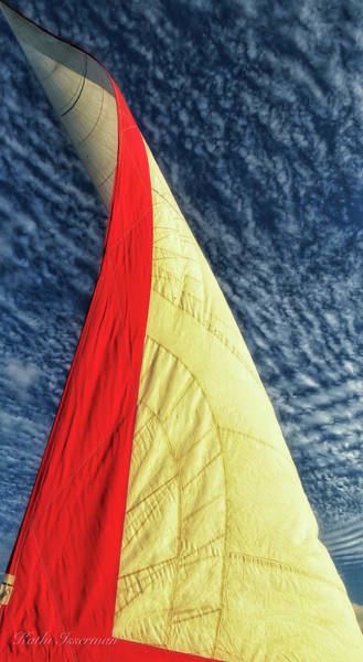 Wall Art - Photograph - Sailing The Seas by Kathi Isserman
