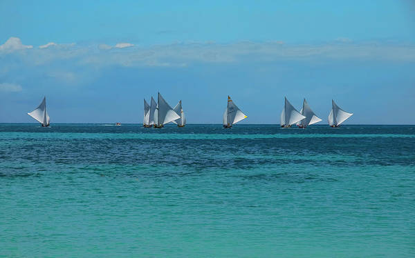 Photograph - Sails Dancing In The Wind by Ola Allen