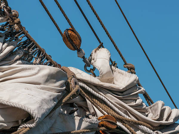 Photograph - Sails Down by Stewart Helberg