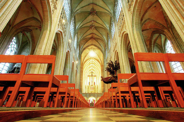 Belgian Culture Photograph - Saint Peters Church Of Leuven by Nino H. Photography