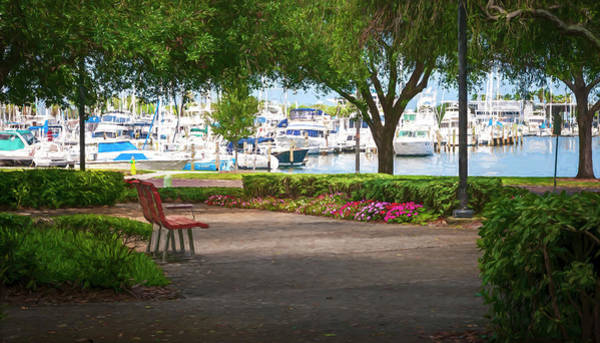Photograph - Saint Petersburg Florida Impression by Steven Sparks