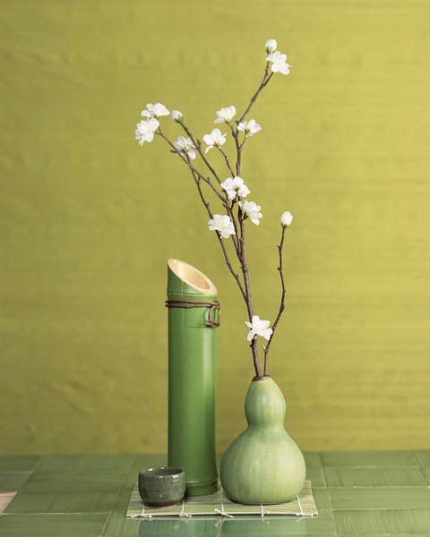 Wall Art - Photograph - Sake Decanter And Cherry Blossom by Jack Andersen