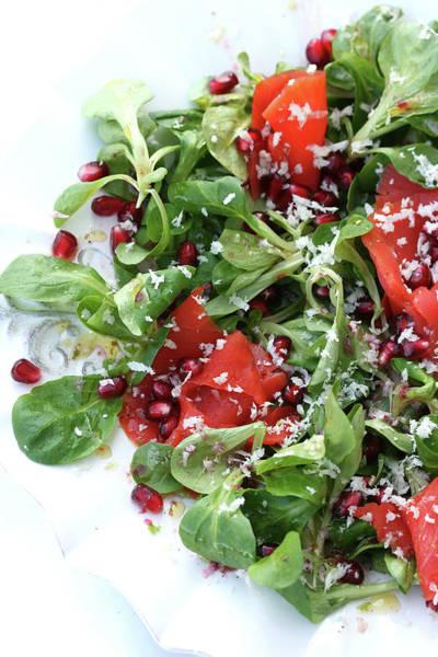 German Food Photograph - Salad With Smoked Salmon by @lexandra Panella