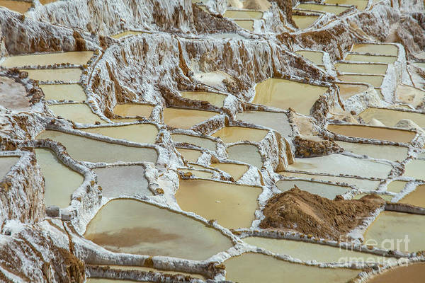 Wall Art - Photograph - Salinas In Peru by Patricia Hofmeester