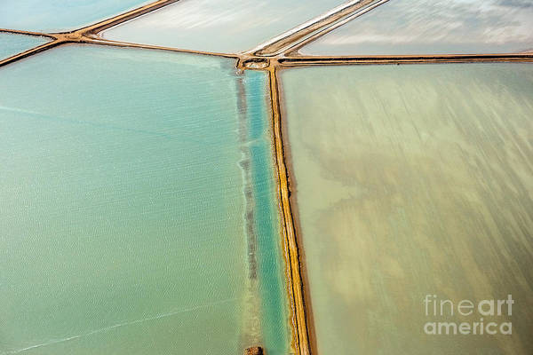Mineral Wall Art - Photograph - Saline Aerial View In Shark Bay Monkey by Andrea Izzotti