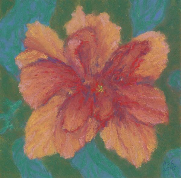 Pastel - Salmon Hibiscus by Anne Katzeff