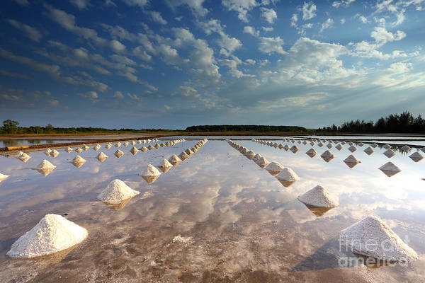 Pile Wall Art - Photograph - Salt Farm In Eastern, Thailand by Isarescheewin
