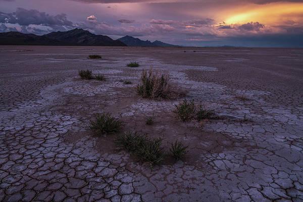 Photograph - Salt Flat Sunset by Roy Nelson