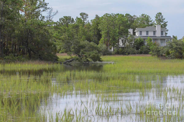 Photograph - Salt Marsh - Rivertowne On The Wando by Dale Powell