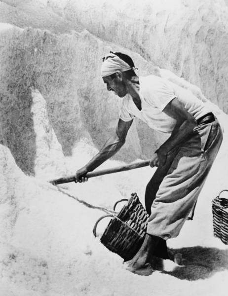 Sardinia Photograph - Salt Production In Sardinia In 1951 by Keystone-france