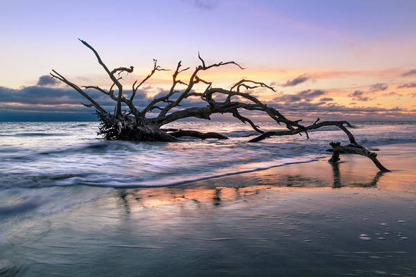 Photograph - Salty Reach by Debra and Dave Vanderlaan
