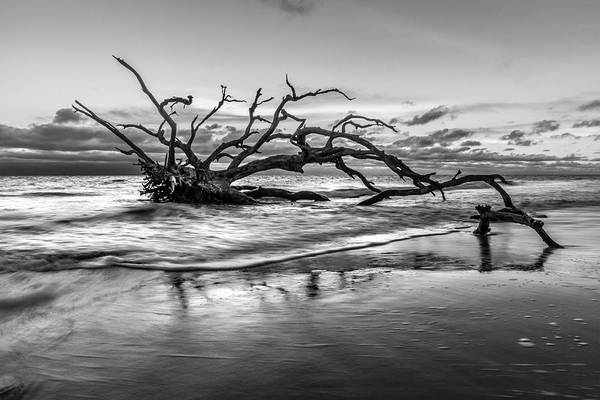 Photograph - Salty Reach In Black And White by Debra and Dave Vanderlaan