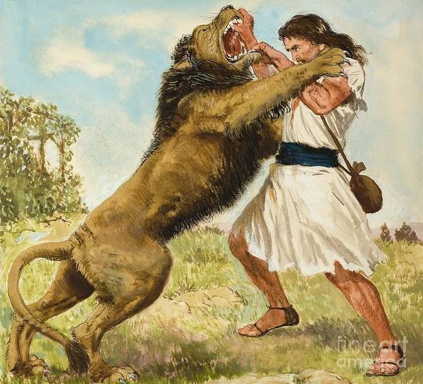 Big Fight Painting - Samson Fighting A Lion by Clive Uptton