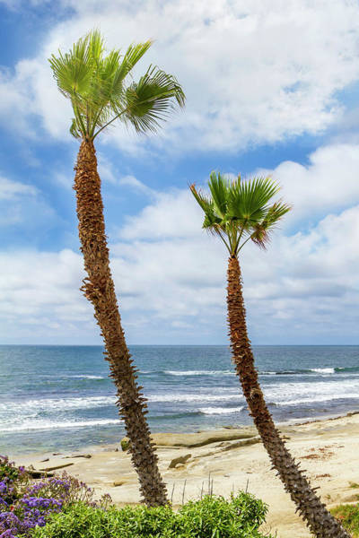 Wall Art - Photograph - San Diego La Jolla Seascape by Melanie Viola