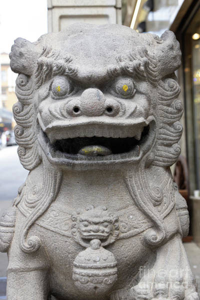 Photograph - San Francisco Chinatown Dragon Gate Guardian Lion R406 by Wingsdomain Art and Photography