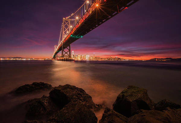 Wall Art - Photograph - San Francisco Holiday Special by Vincent James