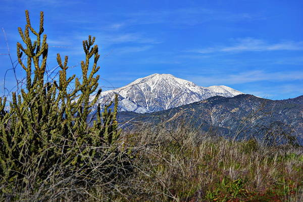 Photograph - San Gorgonio Mountain by Glenn McCarthy Art and Photography