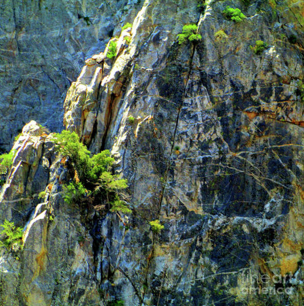 Aerial Tramway Wall Art - Photograph - San Jacinto Mountains 1 by Randall Weidner
