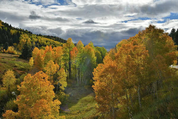 Photograph - San Juan Mountains Fall Color by Ray Mathis
