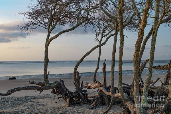 Photograph - Sand And Sea - Breach Inlet by Dale Powell