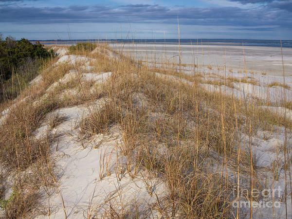 Photograph - Sand Dune by Patrick M Lynch