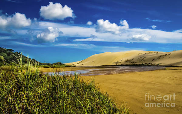 Photograph - 90 Miles Beach, New Zealand by Lyl Dil Creations