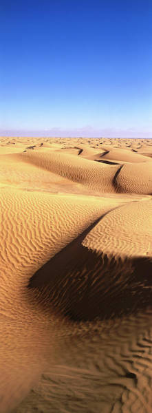 Photograph - Sand Dunes In Sahara Desert by Christopher Groenhout