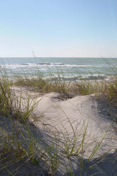 Photograph - Sand Dunes On Gulf Of Mexico, Caspersen by Myloupe/uig