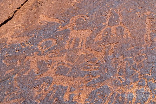 Photograph - Sand Island Native American Petroglyph Site Near Bluff, Utah Usa by William Kuta