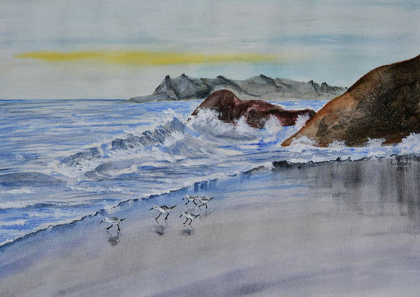 Wall Art - Painting - Sand Pipers On The Shore - Original by Linda Brody