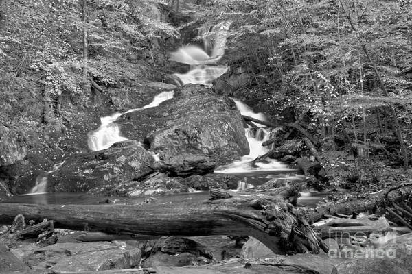 Photograph - Sanderson Brook Falls Fall Landscape Black And White by Adam Jewell