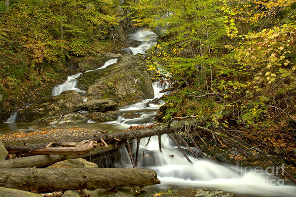 Photograph - Sanderson Brook Falls Through The Logs by Adam Jewell