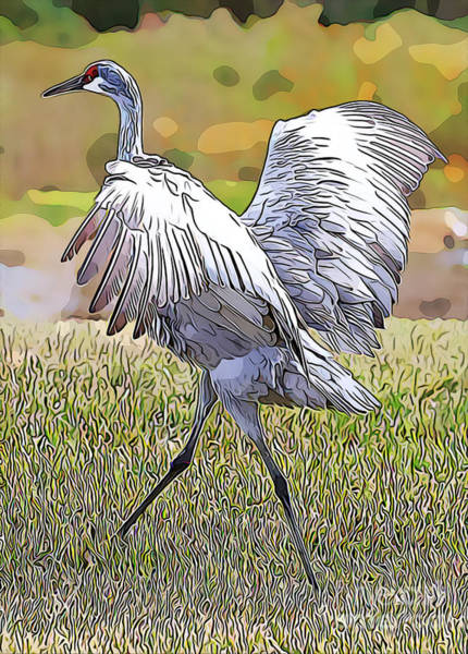 Photograph - Sandhill In Motion - Digital Art by Carol Groenen