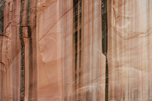 Wall Art - Photograph - Sandstone Cliff Above Calf Creek Trail by William Mullins