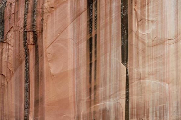 Sandstone Cliff Above Calf Creek Trail Art Print by William Mullins