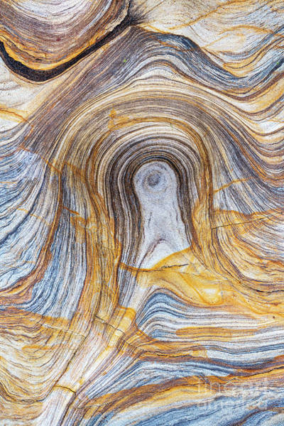 Wall Art - Photograph - Sandstone Pattern by Tim Gainey