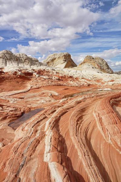 Photograph - Sandstone Ridges by Leda Robertson