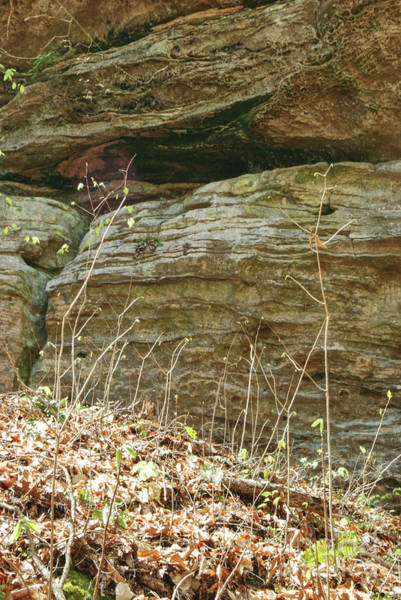 Photograph - Sandstone Wall by Phil Perkins