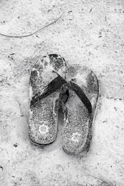 Flip Flops Photograph - Sandy Flip Flop Friends Bermuda by Betsy Knapp