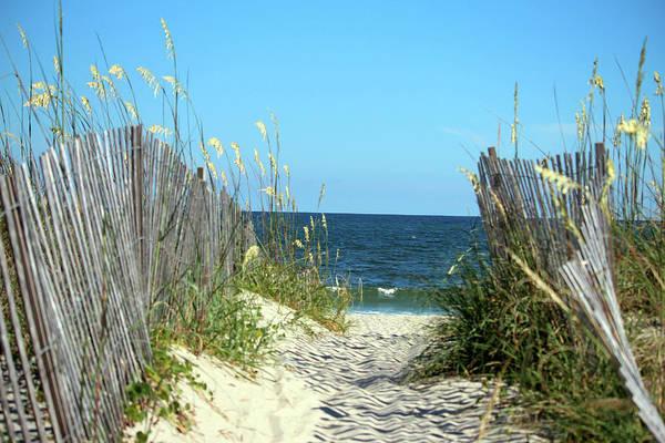 Photograph - Sandy Path To The Sea by Cynthia Guinn