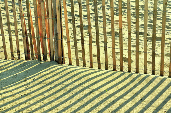 Photograph - Sandy Pinstripes by JAMART Photography