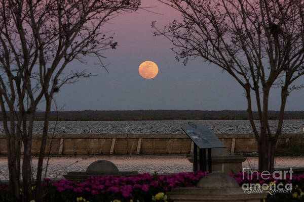Photograph - Sanford Riverwalk-moonrise-9395 by John Zawacki