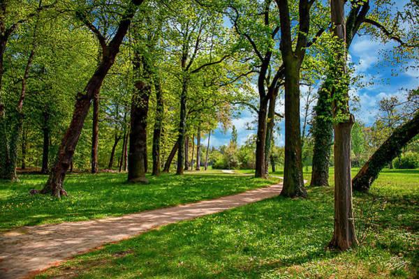Photograph - Sans Souci Path by Endre Balogh