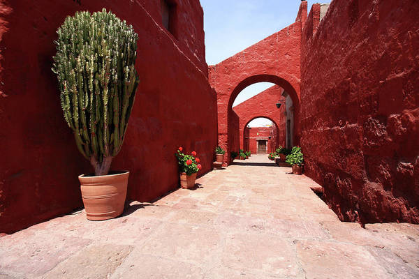 Photograph - Santa Catalina Monastery, Peru by Aidan Moran