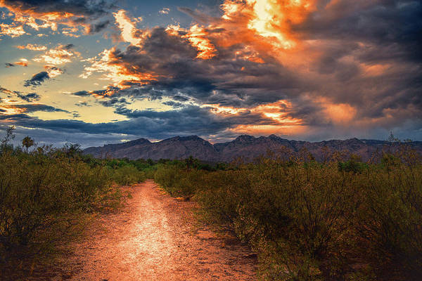 Photograph - Santa Catalina Mountains Path, Tucson by Chance Kafka