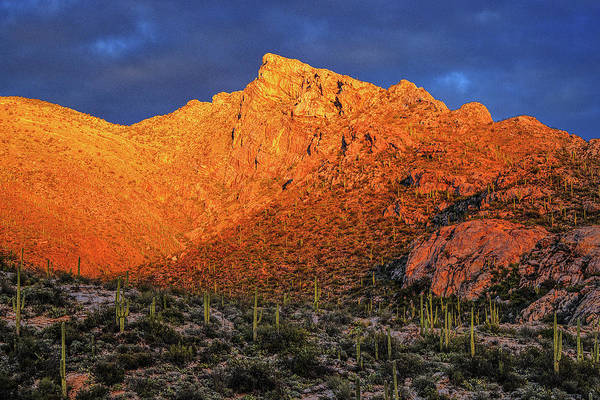 Photograph - Santa Catalinas At Last Light by Chance Kafka
