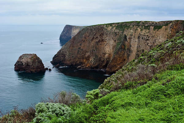 Photograph - Santa Cruz Island Bluff Trail by Kyle Hanson