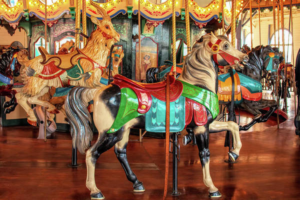 Photograph - Santa Monica Carousel Stander Horse by Kristia Adams