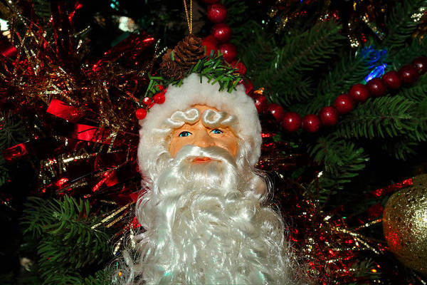 Photograph - Santa, With A Long Beard, Hanging On A Christmas Tree by Doc Braham