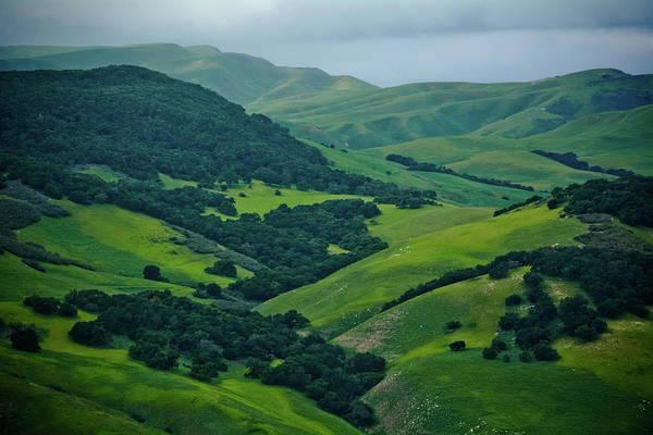 Photograph - Santa Ynez Green Valley by Kyle Hanson